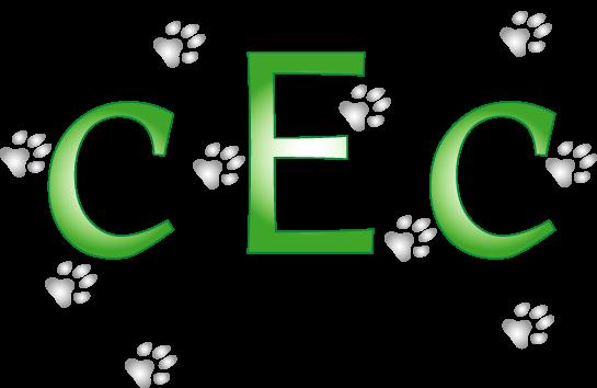 CEC Bellevue